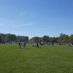 Stadtpark_Grillen